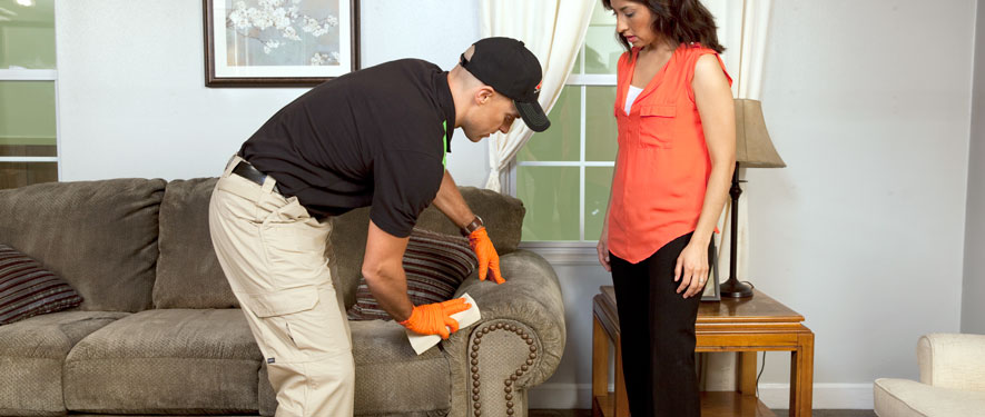 Puyallup, WA carpet upholstery cleaning