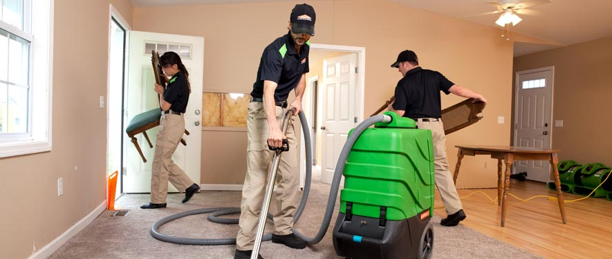 Puyallup, WA cleaning services